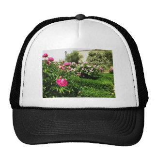A Serene Rose Garden Cap