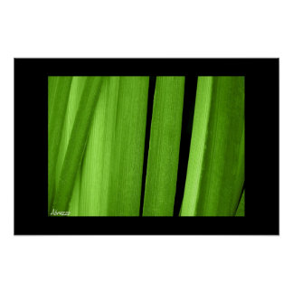 A Shade of Green Poster