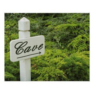 A sign pointing tho the wine cellar (Cave) in Poster
