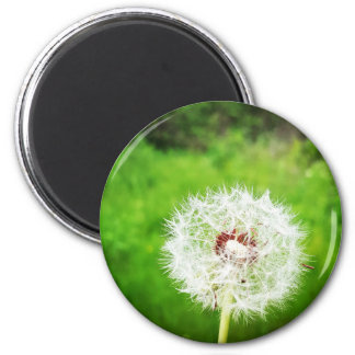 a simple wish 6 cm round magnet