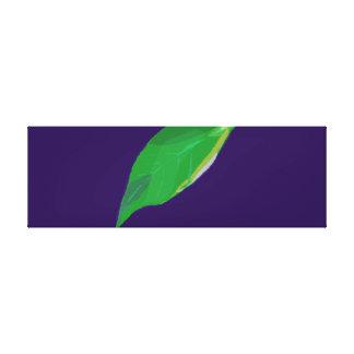 A Single Green Leaf Stretched Canvas Prints