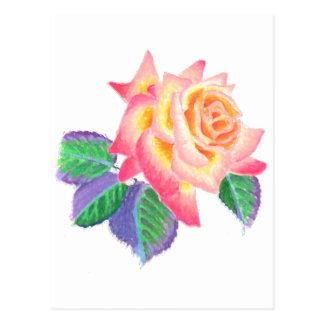 A single hybrid tea rose in pastel colors. postcard