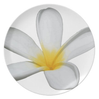 A Single Plumeria Flower Isolated Plate