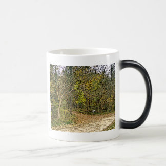A Sketched Autumn's Day Hiking Trail 11 Oz Magic Heat Color-Changing Coffee Mug