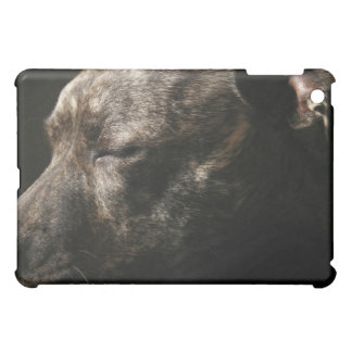 A sleeping pit bull dog iPad mini covers