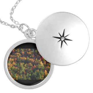 A Slice of Fall Round Locket Necklace