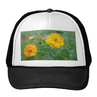 A small dragon fly sitting on a yellow flower mesh hats