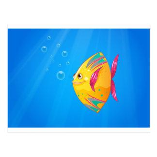 A smiling fish swimming postcard