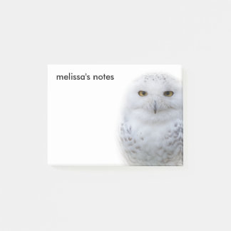 A Snowy Owl Encounter Post-it Notes