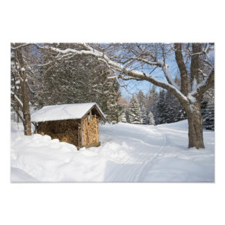 A snowy scene at the AMC s Little Lyford Pond Photographic Print