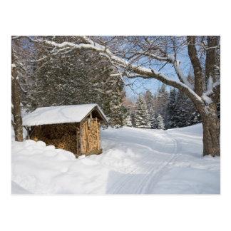 A snowy scene at the AMC's Little Lyford Pond Postcard