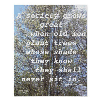 A SOCIETY GROWS GREAT GREEK PROVERB POSTER