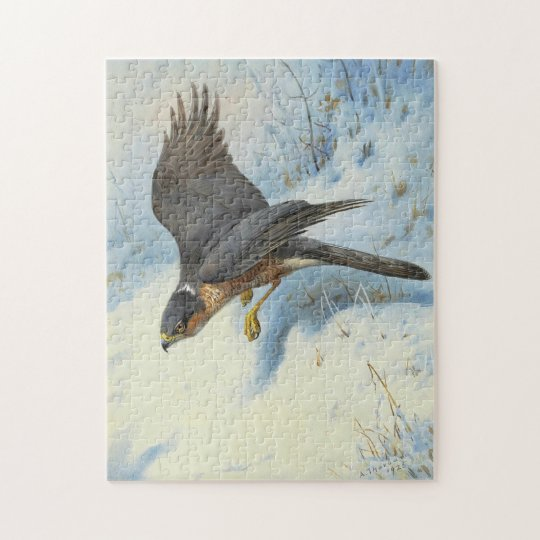 A Sparrow-hawk in Flight Jigsaw Puzzle