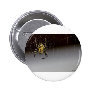 A Spider And His Web Up Close 6 Cm Round Badge