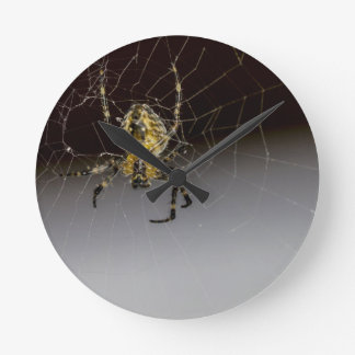 A Spider And His Web Up Close Round Clock