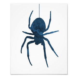 A spider photo print