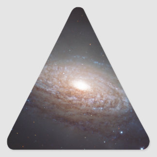 A spiral galaxy in Leo Triangle Sticker