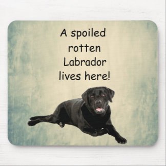 A Spoiled Rotten Labrador Lives Here Mouse Pad
