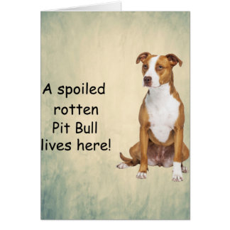 A Spoiled Rotten Pit Bull Lives here Card