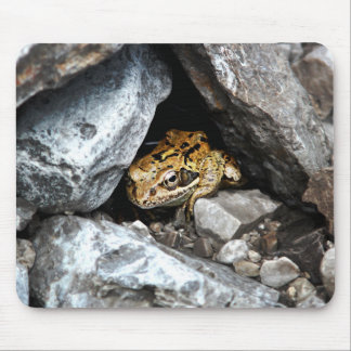 A spotted Frog hides among the rocks in a yard Mousepads