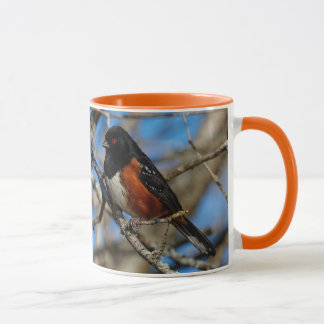 A Spotted Towhee in a Tree Mug
