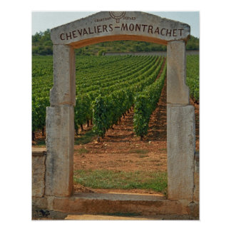 A stone portico to the vineyard poster
