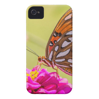 A Summer Butterfly iPhone 4 Case