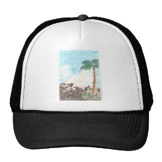 A Sun Set in Paridise Hats