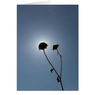 A Sunflower Eclipse Card