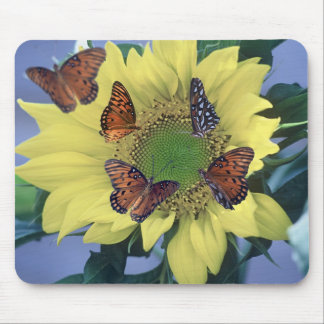 A Sunflower with Several Butterflies Mouse Pad