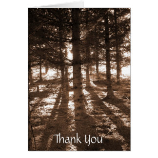 A sunset in the forest thank you note card