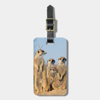 A Suricate family sunning themselves at their den Travel Bag Tags