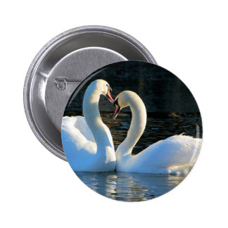 A Swan Heart Kiss, Reflections of Love Pin