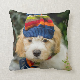 A Sweet Cavachon Puppy In A Winter Hat And Scarf Cushion