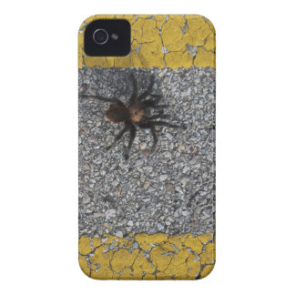 A tarantula crossing the road iPhone 4 covers