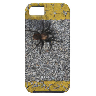 A tarantula crossing the road iPhone 5 case