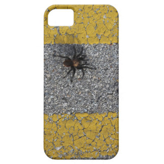 A tarantula crossing the road iPhone 5 cover