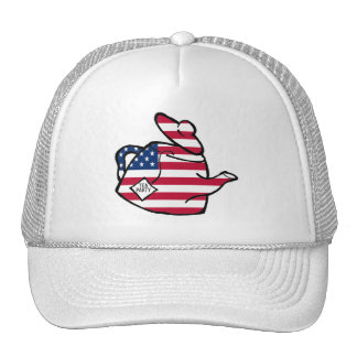 A Teapot in American Flag Colors Cap
