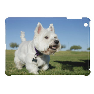 A Terrier playing out in the field iPad Mini Cover