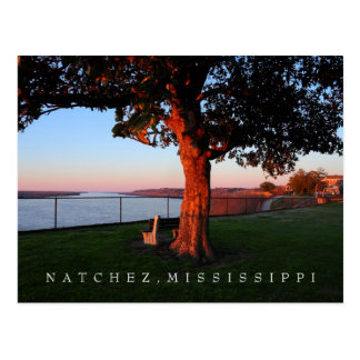 A time of remembrance - Natchez, Mississippi Postcard