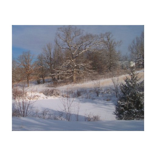 A Touch of Snow Wrapped Canvas Stretched Canvas Prints