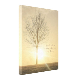 A Tree, Fog & a Sunrise with Beams of Light Canvas Print
