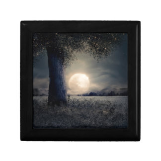 A Tree in the Moonlight Gift Box