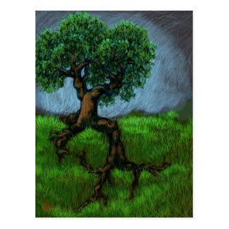 A Tree on a Hill Postcard