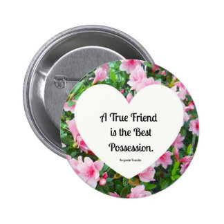A true friend is the best possession pins