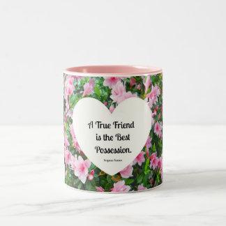A true friend is the best possession. coffee mug