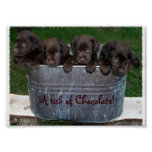 A tub of Chocolate picture Poster