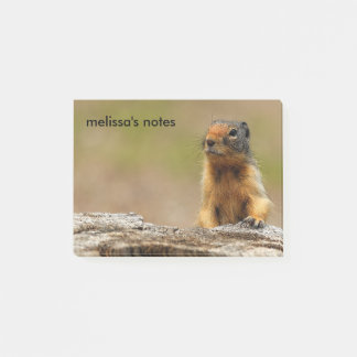 A Twitchy-Nosed Columbian Ground Squirrel Post-it Notes