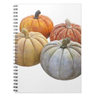 A Variety of Pumpkins Notebook