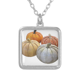 A Variety of Pumpkins Silver Plated Necklace